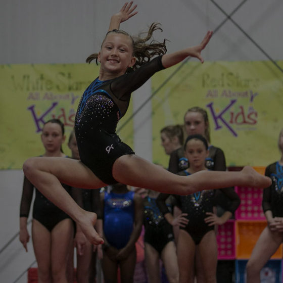 Crosby Interactive Custom Louisville Web Design All About Kids Gymnastics