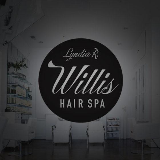 Lyndia R Willis Hair Spa Custom Louisville Web Design